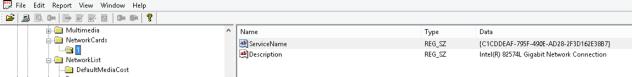 Registry_Viewer_NetworkCards_Key